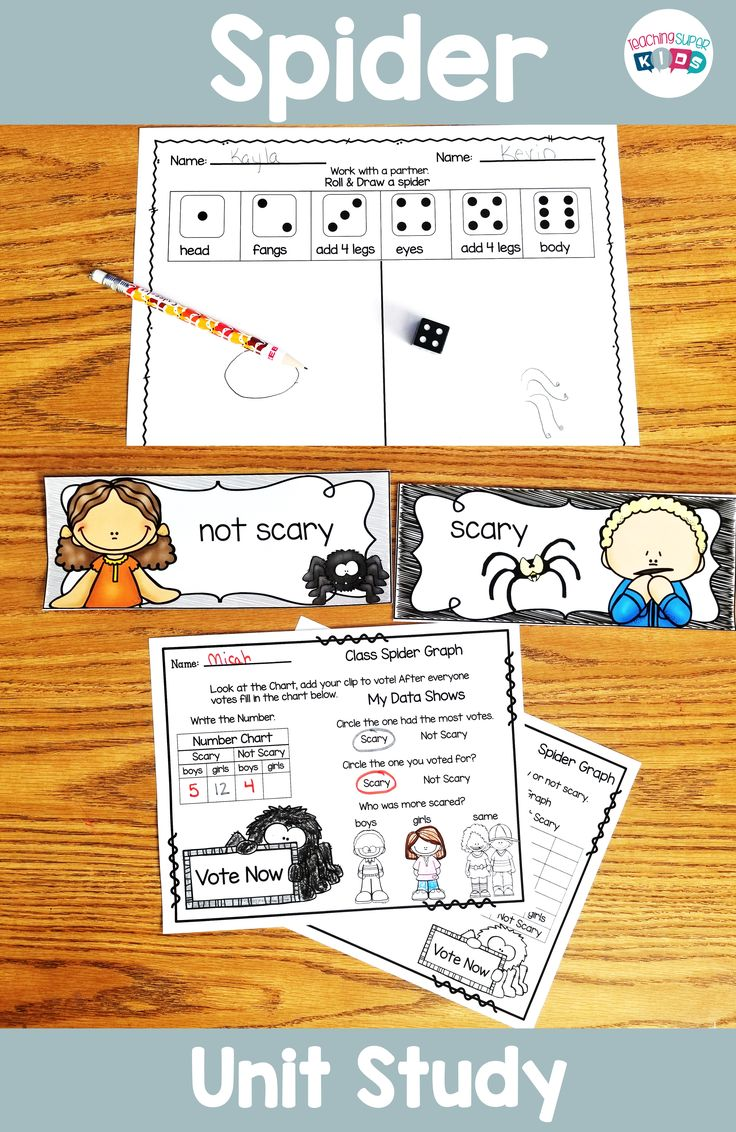Spider graphing fun, this unit study on Spiders includes so many hands on activities. Your class will love to cast their vote for scary or not scary!