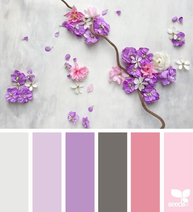 Purple Colour Scheme: Best 25+ Purple Color Palettes Ideas On Pinterest