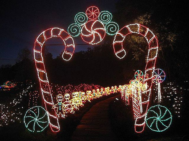 Garden Of Lights Green Bay Wi Amusing 87 Best Christmas Lights Images On Pinterest  Christmas Lights Design Ideas