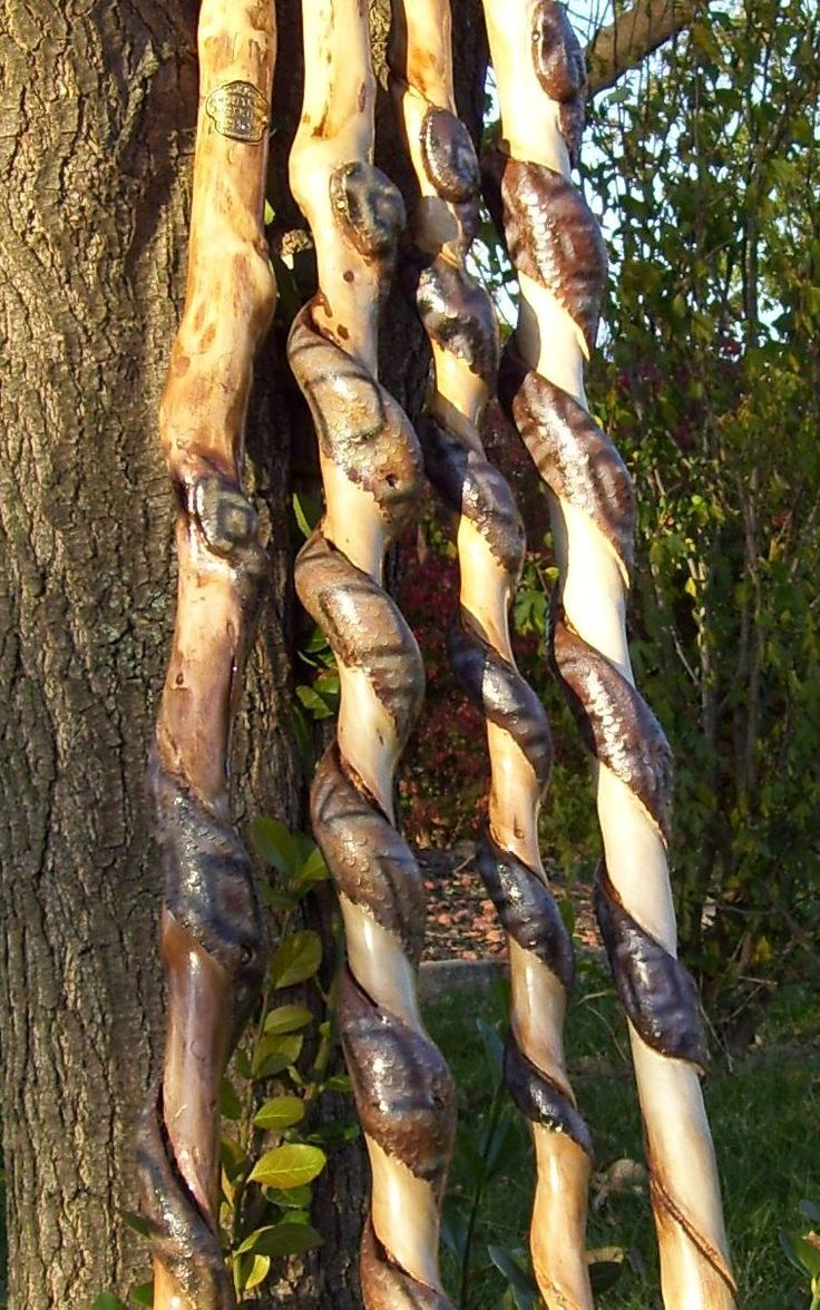 Snakes Carved Walking Stick And Canes Wooden Walking