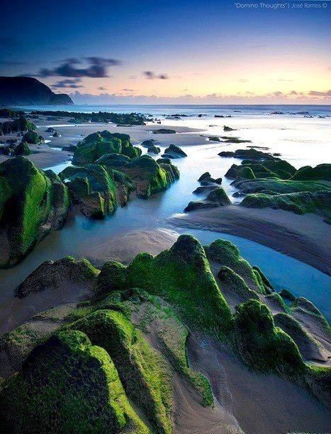 Rocks and ocean landscape
