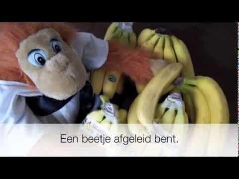 ▶ Film over Sterk en Stevig tijdens het optreden van meiden tijdens de kerstshow 2013 - YouTube