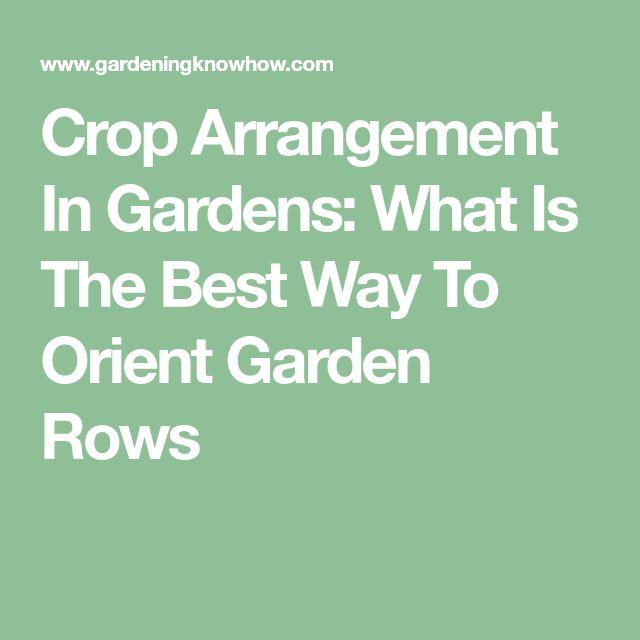 Crop Arrangement In Gardens: What Is The Best Way To Orient Garden Rows