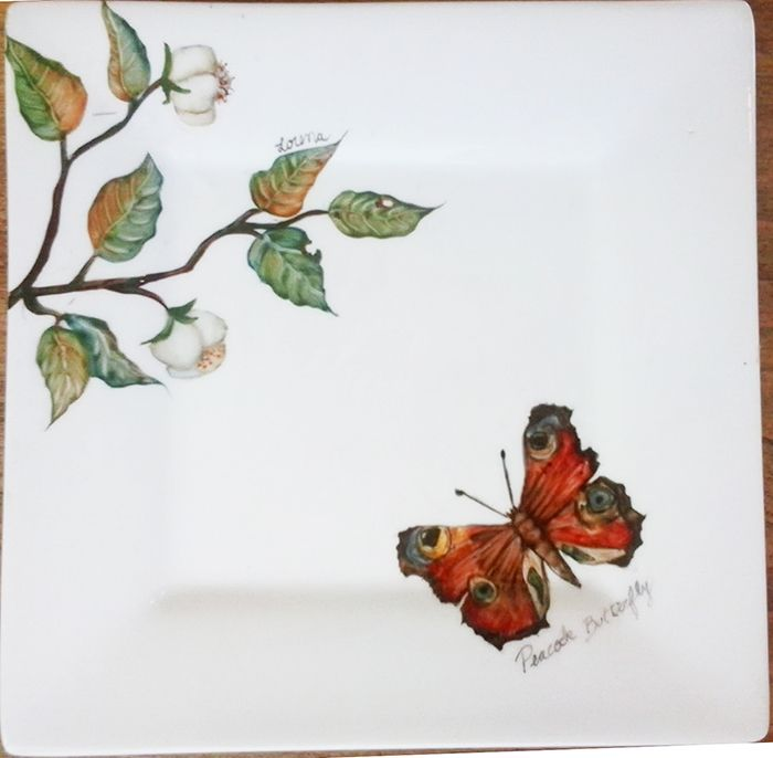 Plato chico naturaleza e insectos 4