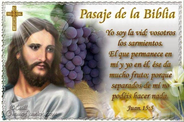 Vidas Santas: Santo Evangelio según san Juan 15:5