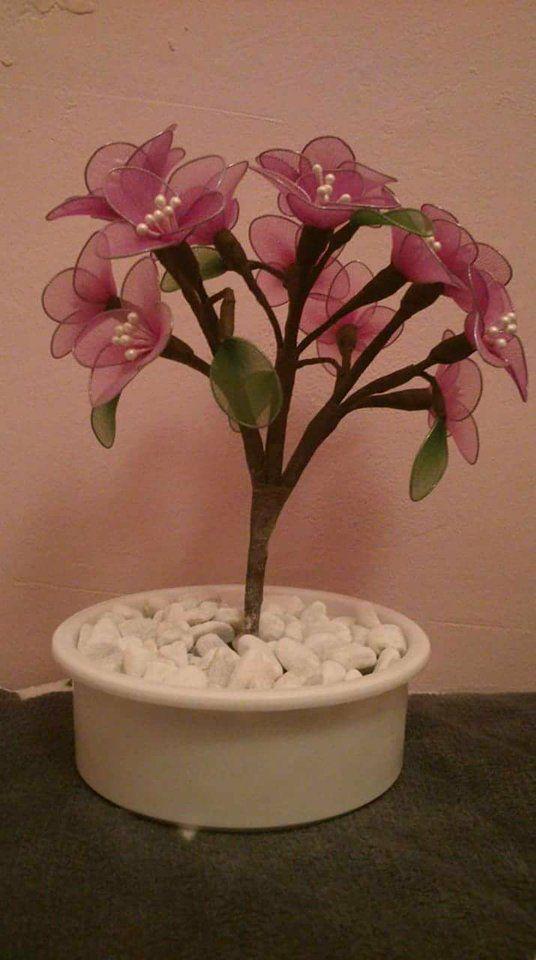 Pink bonsai