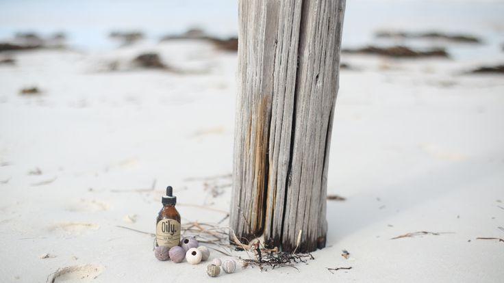 Oily on the beach