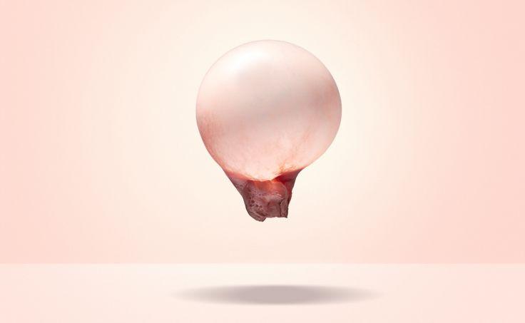 Adrian Armstrong #bubblegum Fuze Reps | Toronto Ontario Canada | TEL 416.656.8585