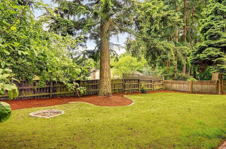 Spacious backyard - perfect for kids and pets to play in! Also great for barbeques and parties.