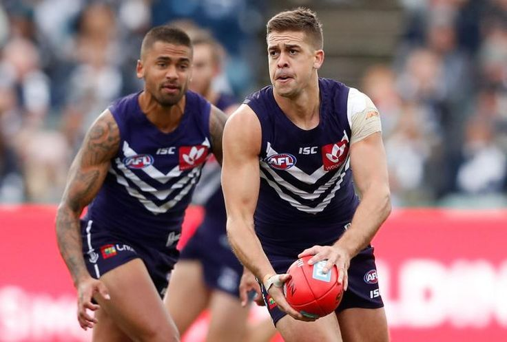 Hill brothers in action, AFL 2017