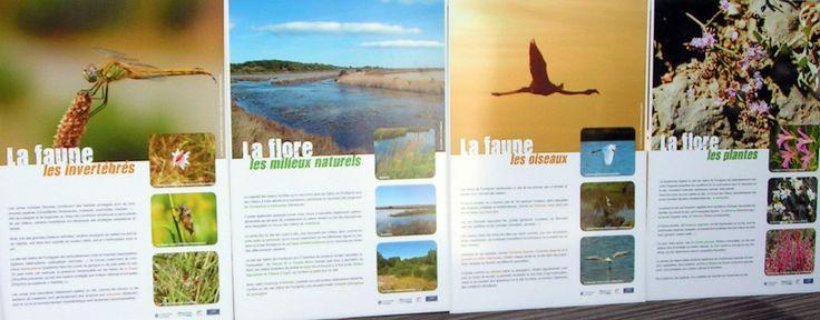 Sensibilisation à l'environnement. Exemples de panneaux d'exposition proposés par l'EID-Med.
