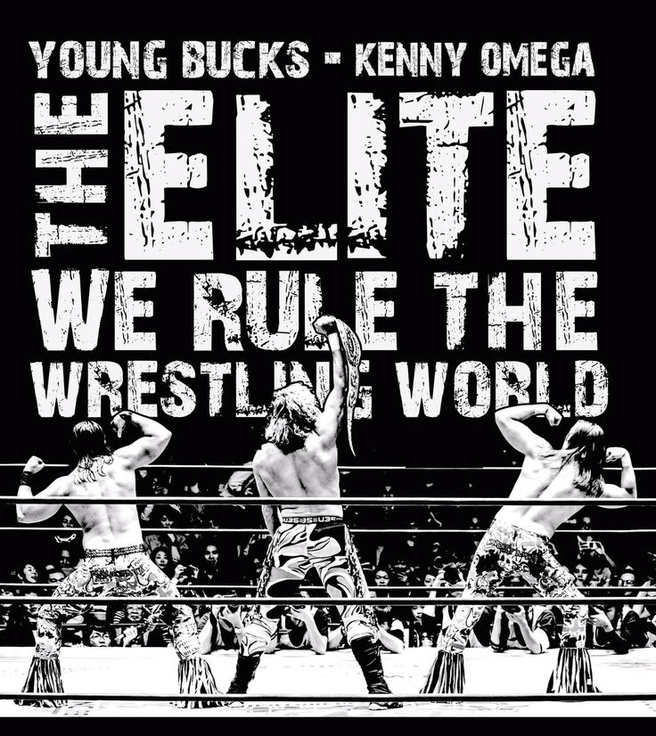 The Elite - The Young Bucks -Kenny Omega - Bullet Club