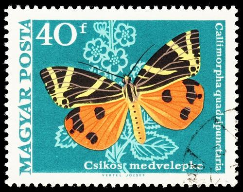 stamp hungary 1969 spanische flagge callimorpha quadripunctaria by pixelschubser.de, via Flickr