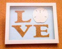 Sand Dollar Shadow Box