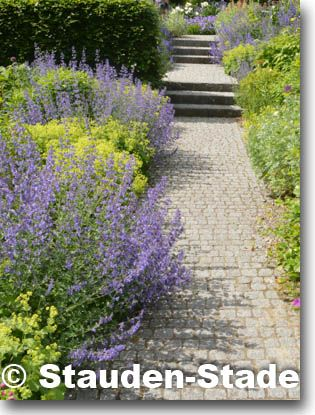94 best Garten images on Pinterest Cabins, Decks and For kids