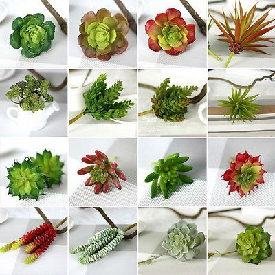 Decor Foliage Silk Flower Fake Succulent Plant Fruit String Artificial  Office
