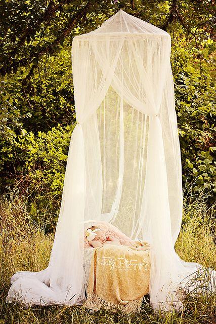 Newborn pose, props.  Tishy Photography