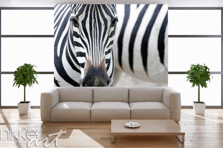 Fotobehang Zebra Is het uw slaapkamer, keuken of badkamer die wel een kleine make-over kan gebruiken? Voor elke ruimte en elk gebouw heeft Nikkel-art.be het perfecte fotobehang in huis. Ons schitterende fotobehang is origineel en beïnvloed direct de sfeer in de kamer positief. http://www.nikkel-art.be/fotobehang-205-zebra.html