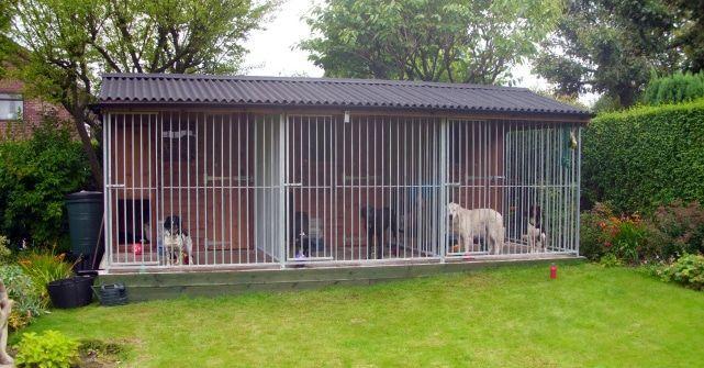 Local Dog Kennels Near Me Petcloud Petcloud Dog Kennel Pet Kennels Dog Runs