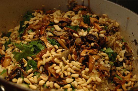 Roerschotel met gerst (of ander graan) (met bloemkool, champignons, lente-ui en pijnboompitten)