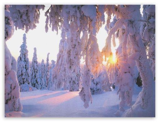 Winter's tale HD desktop wallpaper : Fullscreen