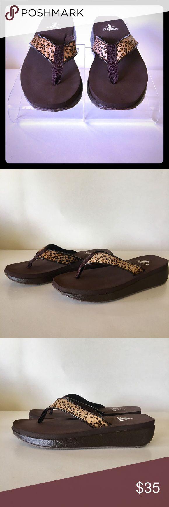 Women's cheetah hair wedge thing sandal Women's cheetah hair wedge thong sandal Shoes Sandals