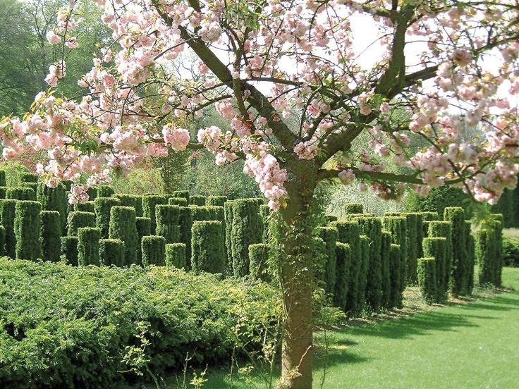 Les 36 meilleures images propos de jardin parc sur for Visiter les plus beaux jardins anglais