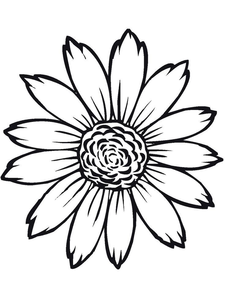 Asombroso Dibujo De Flor De Bluebonnet Para Colorear Elaboración ...