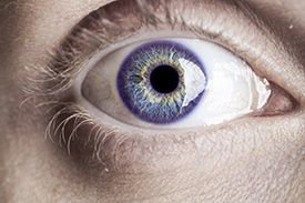 Closeup of a Violet Eye