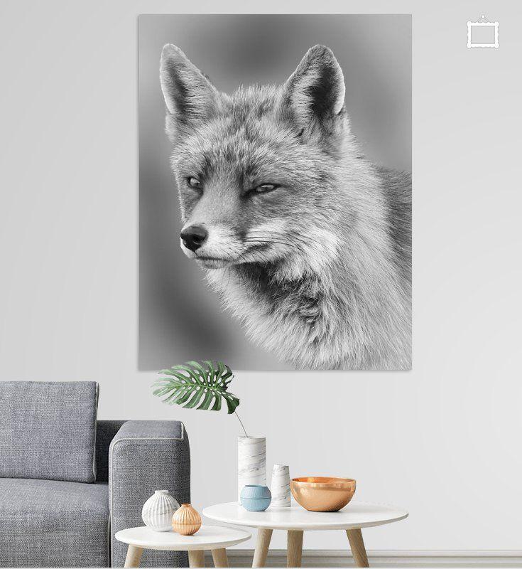 Portrat Eines Fuchses In Schwarzweiss Poster Marjolein Van Middelkoop Ohmyprints In 2020 Schwarz Weiss Cartoon Zeichnungen Fuchs