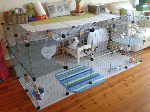 200 best bunny cages, housing and diy condos images on pinterest