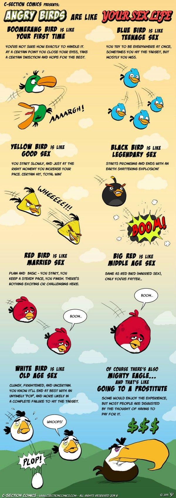 Saiba porque o jogo Angry Birds é igual a sua vida sexual