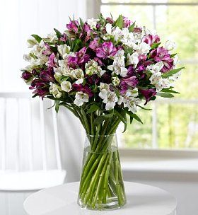 Alstroemeria Abundance-Marks & Spencer