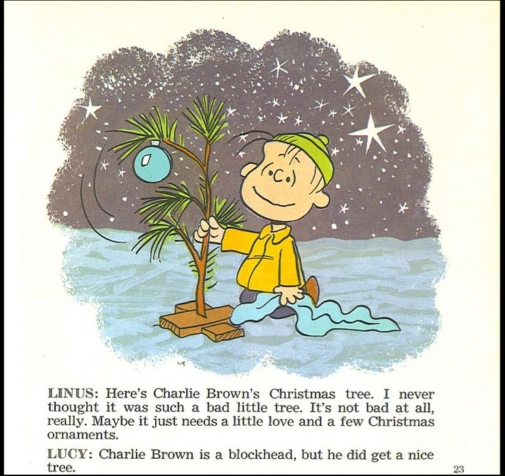 a charlie brown christmas book with sound
