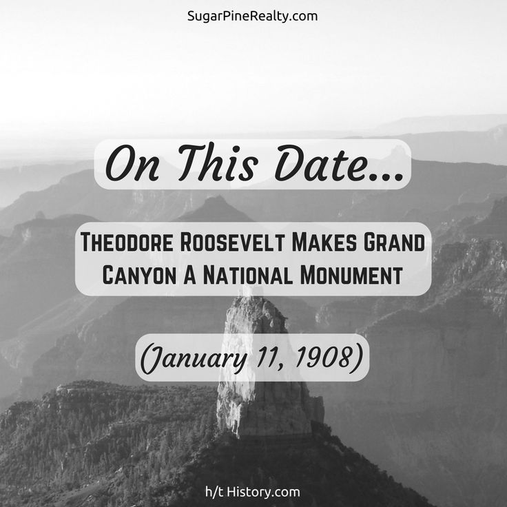 Grand Canyon Quotes: Best 25+ Theodore Roosevelt Ideas On Pinterest