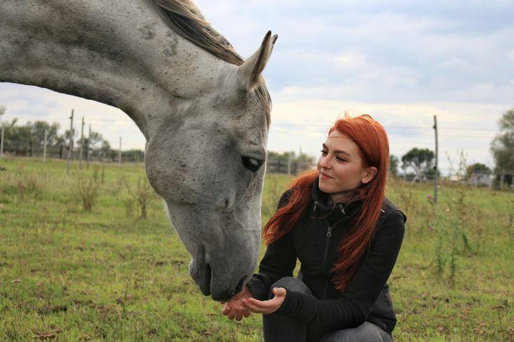 My dappled grey horse