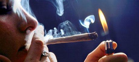 En los últimos años se ha abierto un amplio debate sobre las características, beneficios y riesgos del consumo de cannabis. Información vaga o confusa ha s
