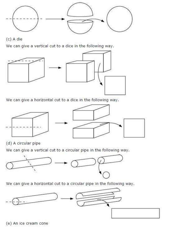 Ncert Solutions For Class 7 Maths Chapter 15 Visualising Solid Shapes Ex 15 3 Maths Ncert Solutions Math Visualisation