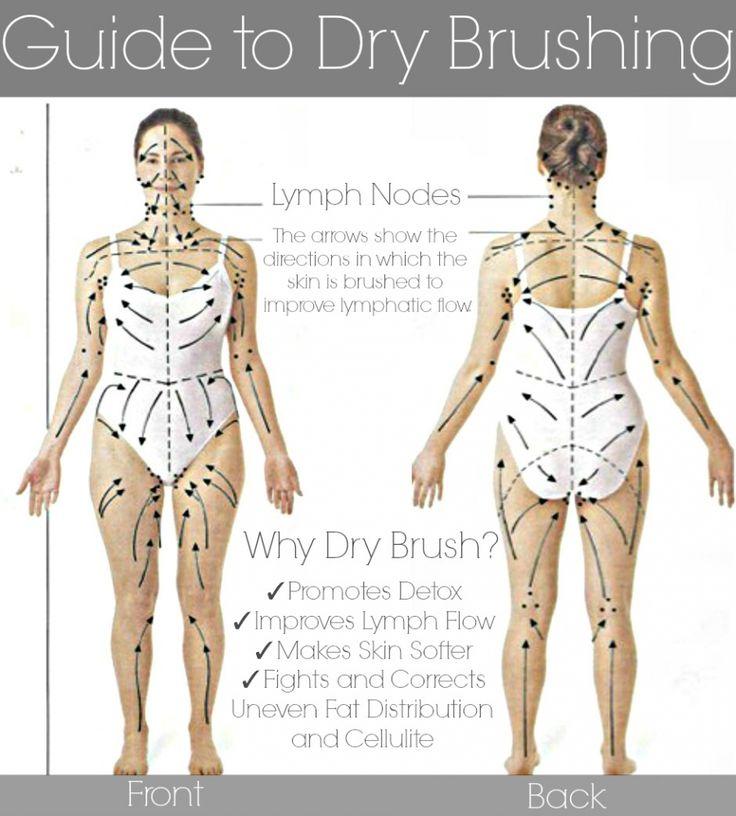 Body chart for dry skin brushing