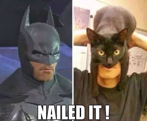 nailed it humor - Google Search