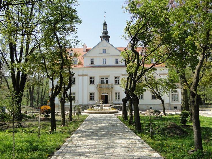 Ciechanowice - Pałac -