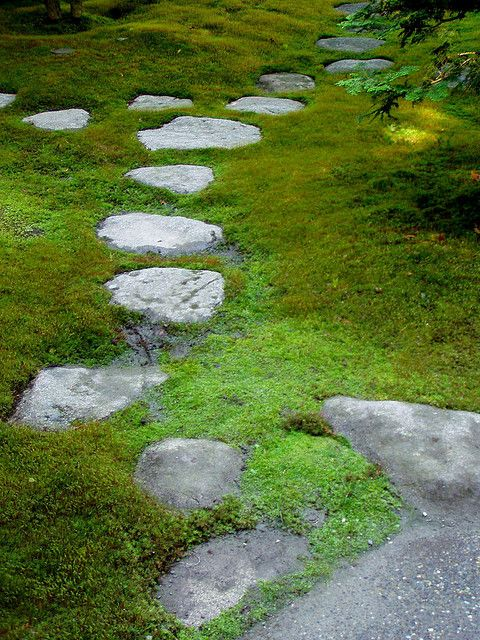 87 Best Images About Zen Gardens On Pinterest Gardens