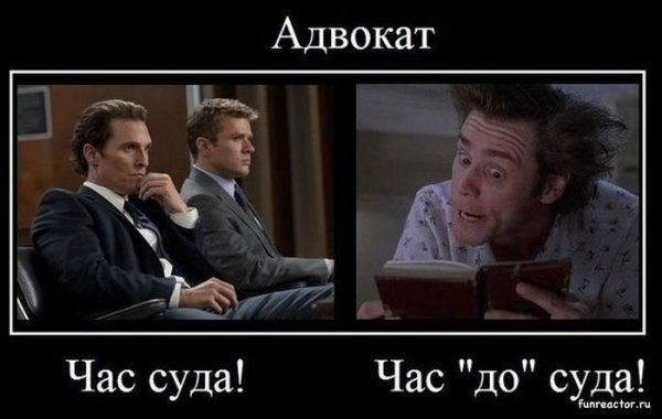 Днем, смешные картинки об адвокатах