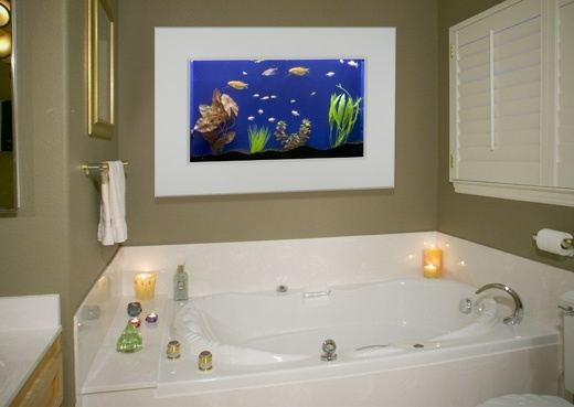 35 curated aquarium and koi ponds ideas by tbritt48 for Luxury fish tanks