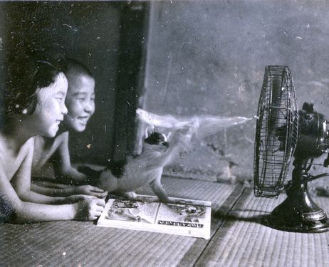 Kimiko Suzuki, foreground, and her older brother Hideaki watch their cat play in front of a fan in Hiroshima in 1941. (Provided by Tsuneaki Suzuki)
