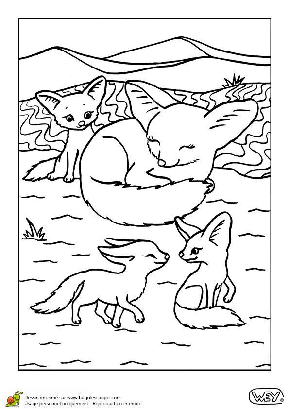 Dessin colorier de deux petits fennecs en train de jouer - Dessin de printemps a imprimer ...