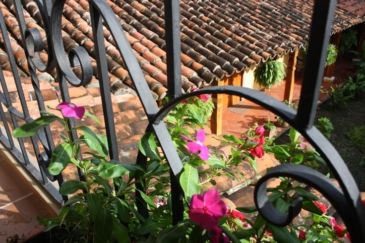 arty shot through the railings into the garden!