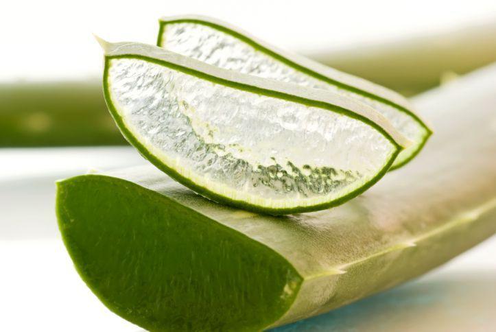 Depois de aprender como fazer o gel de Aloe Vera terá um grande remédio para irritações na pele, ou queimaduras solares, feito por você mesmo. Seguindo alguns procedimentos, pode-se retirar o gel fresco da folha, e armazená-lo para utilizações futuras. E este &ea