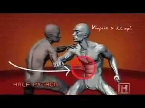 Learn how to fight in 5 minutes. The best techinques for SELF DEFENSE. - YouTube