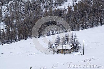 Wonderful lake in a snowy field